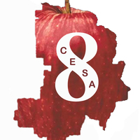 2014-15 CESA 8 RSN-Special Education Leadership Network