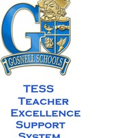 Copy of Copy of TESS (Teacher Excellence Support System)