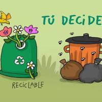 Educaci��n ambiental, adolescentes y sustentabilidad en Jalisco