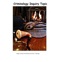 Criminology Inquiry Project