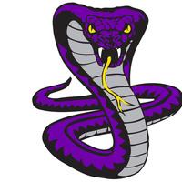 FLHS Cobra Collaboration
