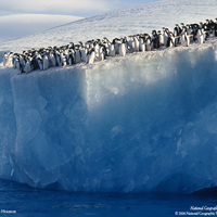 Antarctica Pathfinder