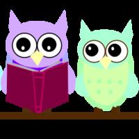 Electronic Portfolio: Literacy Coaching