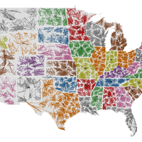 KTIP Unit-Reading Maps