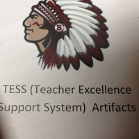 TESS (Teacher Excellence Support System)
