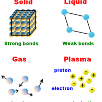 Science 7 Webquest Activity