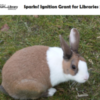 Sparks! Ignition Grant for Libraries 2014
