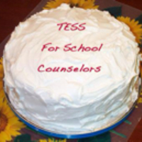 TESS Artifacts Evidence for School Counselors