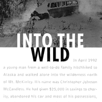 Copy of Into the Wild Portfolio