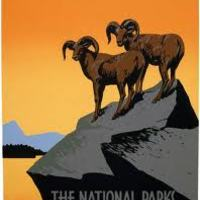 National Park Project