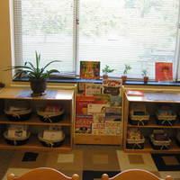 Triangle Lake Online Literacy Links