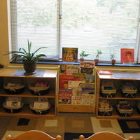 Triangle Lake Online Literacy Links