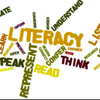 Literacy Groups - Term 1&2