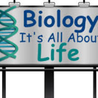 http://www.nextgenscience.org/hsls1-molecules-organisms-structur