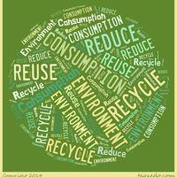 Consumption Webquest