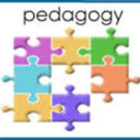 Pedagogy and Professional Development