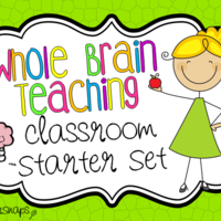 Whole Brain Teaching Resources