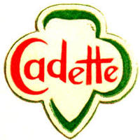Girl Scout Cadette's