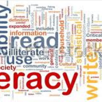 Literacy Groups - Term Three