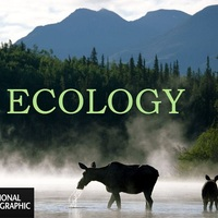 Ecology: The Biotic and Abiotic Environment Grade 7