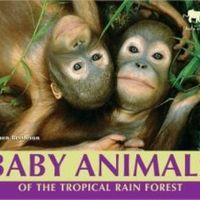 First Grade Module 3 - Animals and Habitats