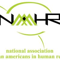 NAAAHR 2014-2015 Mentoring Program