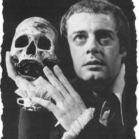 Zielnicki Hamlet