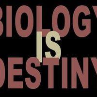 Unseen Biology Binder