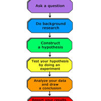 Scientific Method Unit