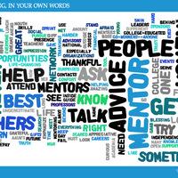 Lead Mentors