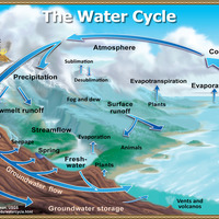 Biogeochemical Cycle