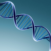 Genetic Testing: Should It Be Used to Terminate Pregnancies?
